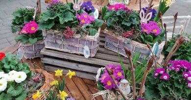 Zpříjemněte si chmurné dny u nás v Zahradě Lisý