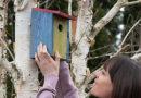Ptáci – Bydlení pro opeřence